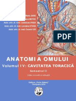 anatomia_20iv_20torace.pdf
