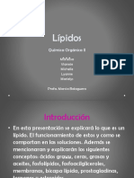 lipidos ppt...pptx