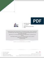 Puentes Peatonales.pdf