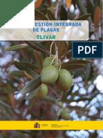 Guía del olivar