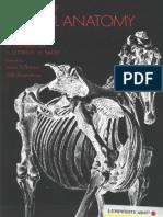 Atlas Animal Anatomy for Artists