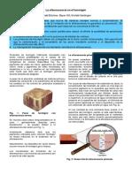 texto_lutz_kohnert_4_esp.pdf