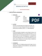 Memoria Descriptiva Walter.docx