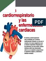AV_42_Sistema_cardiorrespiratorio_enfermedades_cardiacas.pdf