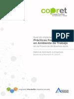 Guia Completa 2018 (Para empresas) acerca de las Prácticas Profesionalizantes
