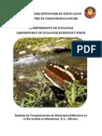 Proyecto Rio La Silla Guadalupe N.L.