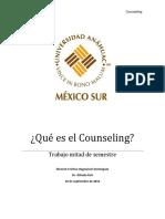 Qué Es El Counseling