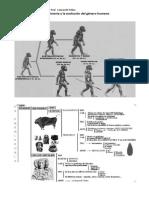 La prehistoria y la evolución del género humano