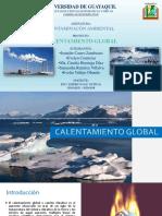 CALENTAMIENTO GLOBAL Exposición de Contaminacion Ambiental