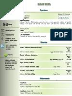 CV Modern.pdf