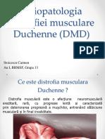 Distrofia Musculară Douchenne DMD (1)