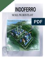 Nickel Pig Iron_Overview_1301-Mod-pdfV.pdf