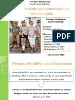 Trabalho - Psicologia Dinamica Do Desenvolvimento - Selectividade Socio-emocional e a Idade Avancada