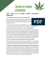 Consecuencias de Fumar Marihuana