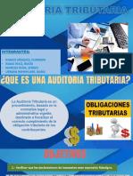 Auditoria Tributaria Expo