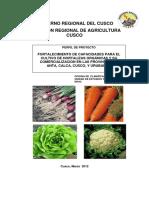 2019 Fortalicimiento de Capacidades Para El Cultivo de Hortalizas Organicas