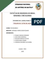 Informe 6 Presion de Vapor de Agua
