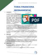 Auditoria Financiera Gubernamental Completo