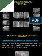 Anatomia Radiografica Periapical 2017-1