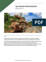 understanding deforestation