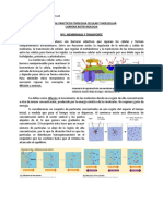 Manual Laboratorio Fisiología Celular y Molecular BT314