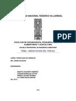 Informe de Hidratacion de Frejol F.