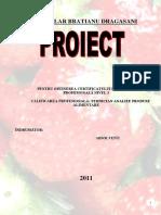 54605168-Dulceata-de-Capsuni-Proiect.docx