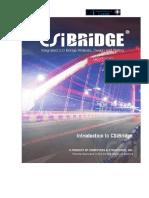 Manual CSIBridge