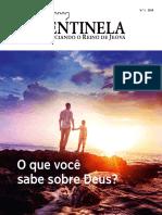 Sentinela numero 01 - 2019