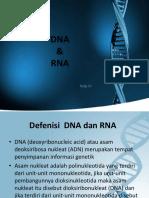 biokimia.pptx
