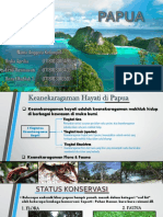 13. Papua