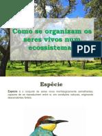 4_ecossistemas