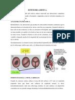 Esternosis Aortica