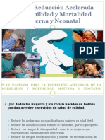 04 Avances del Plan de Reduccion Acelerada de Muerte Materna final.pdf