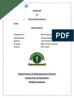 Financial Ratios Assignment