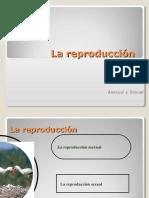 Docdownloader.com 6 Tipos de Reproduccion 1