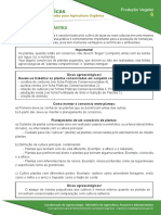 6-consorcio-de-plantas.pdf