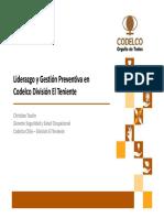 10 - Recursos, Reservas, Planes .. Mineria Hierro - S. Rojas y H. Gomez - CAP Mineria