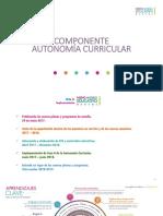 Autonomia Curricular 7 Agosto 2017