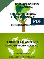 El Derecho Al Ambiente Como Derecho Humano (2017)