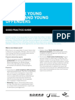5202 High Risk Young Drivers and Young Offenders Fact-sheet-3 Fa Web