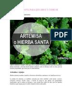 Artemisa Planta Para Que Sirve y Como Se Usa