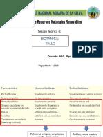 TEORIA 4_BOTANICA.pdf