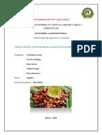 Informe de Extracción de Aceite de Palma