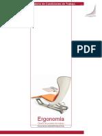 8312_ergonomia_de_pie.pdf
