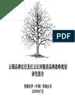 云烟战略报告.pdf