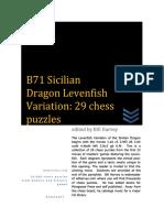 Kupdf.net b71 Sicilian Dragon Levenfish Variation 29 Chess Puzzles