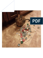 My Cat's Face When I Found Her Hoarding Stash..