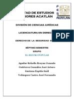 El Seguro Popular.docx