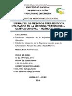 Proyecto de Proyeccion Medicina Alternativa 2018